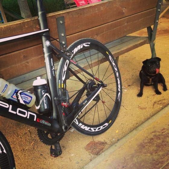 La bici di Daniel Hofer