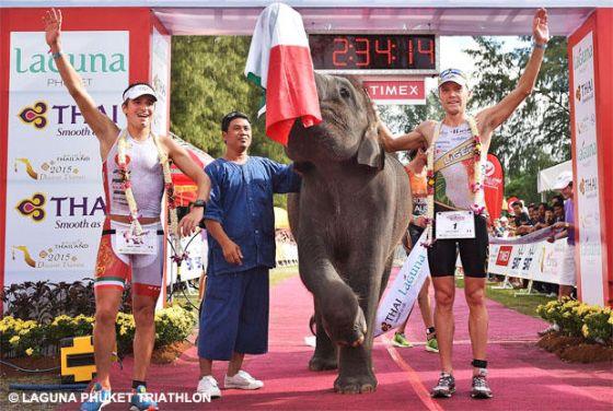 Alberto Casadei e Massimo Cigana festeggiano con l'elefantino la vittoria al Laguna Phuket Triathlon 2014