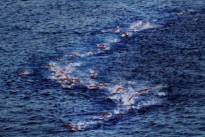 Lo spettacolo della frazione di nuoto dell'Ironman Hawaii 2016 (Foto ©Donald Miralle)
