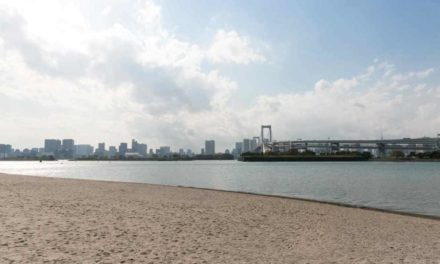 Tokyo 2020, confermati i Test Event. Il triathlon sarà ad agosto 2019